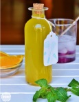 orange mint syrup